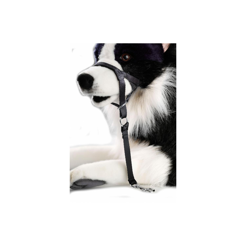 hunde erziehungshalfter halti f r hunde g nstig kaufen bei hunde design 7 45. Black Bedroom Furniture Sets. Home Design Ideas