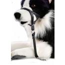 Hunde Erziehungshalfter S