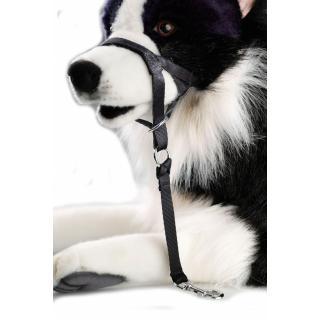 Hunde Erziehungshalfter XXL