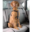 Autosicherheitsgeschirr M / 50-70 cm