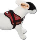 Survival Hundegeschirr Scottish Beige L