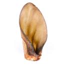 JUMBO Rinderohren mit Muschel